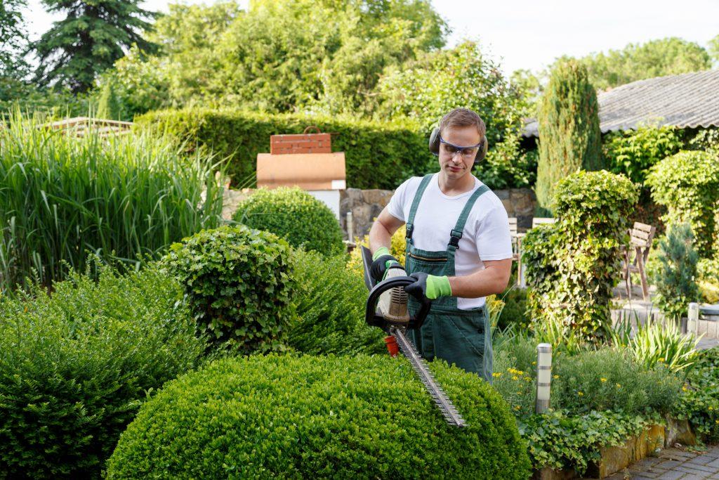 Gartenarbeit Habeko Gebäudemanagement Essen